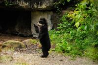 Patentag Zoo Zürich 2014